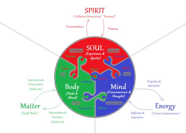 soul,body graph