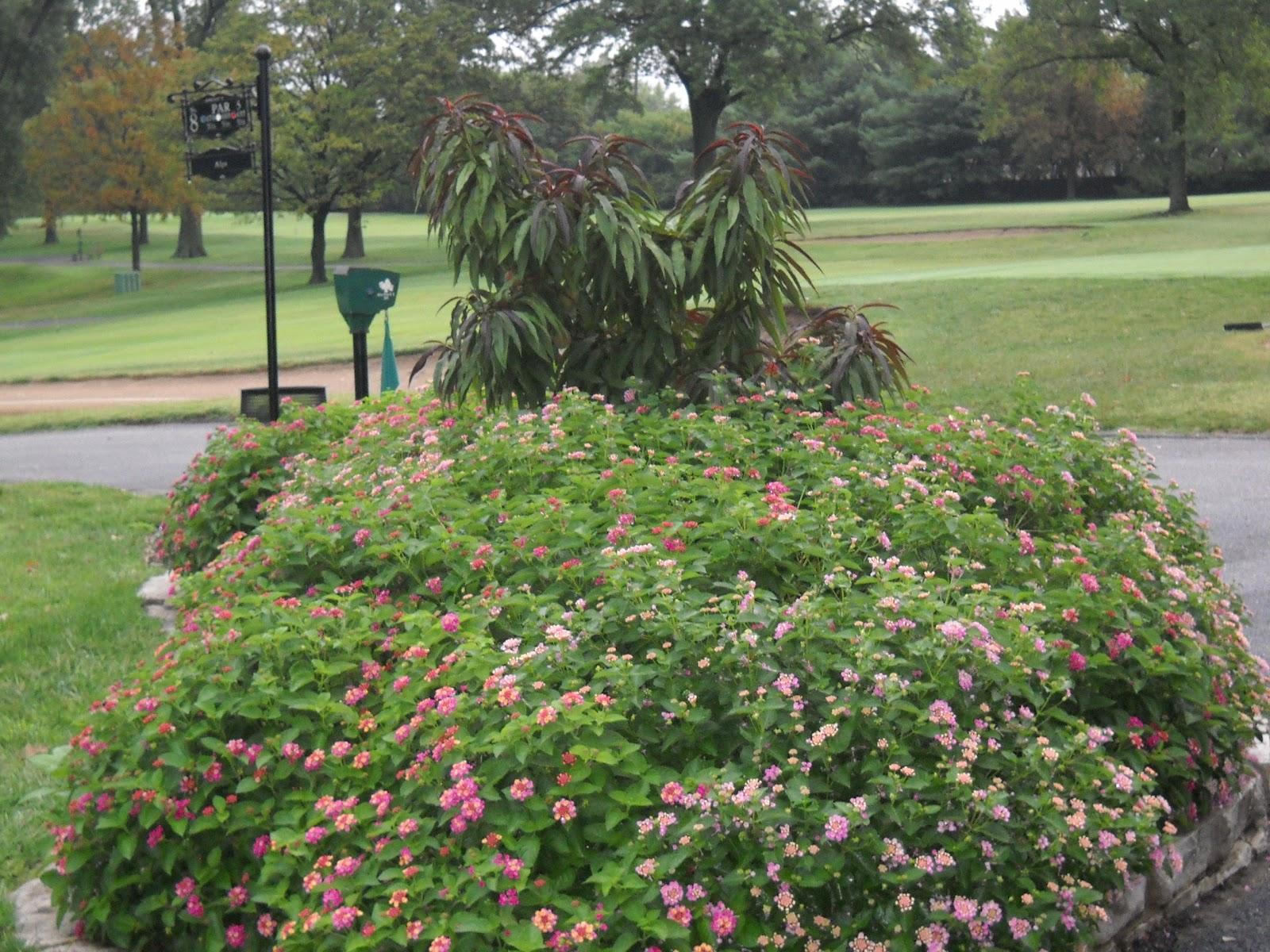 Glen Echo Country Club Golf Course Management