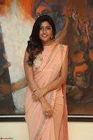 Eesha Rebba in beautiful peach saree at Darshakudu pre release ~  Exclusive Celebrities Galleries 070.JPG