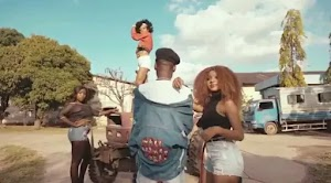 Download Video | Genius ft Dogo Janja - Yangu Roho