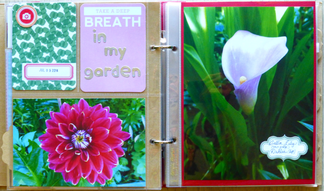 6x8 pocket scrapbook, studio calico sandlot kit, Take a Deep Breath in my Garden, 4x6 photo, 6x8 photo, 3x4 Project Life cards, Project Life