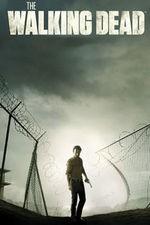 Watch The Walking Dead Season 7 Episode 8 Online Free