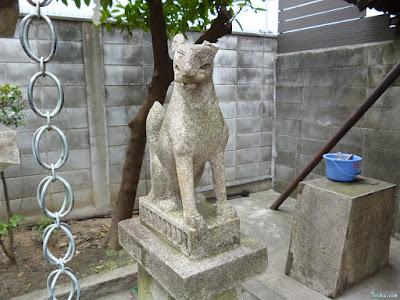 天神社豊光神社白狐