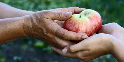 3 Cosas indispensable que tienes que hacer en NAVIDAD