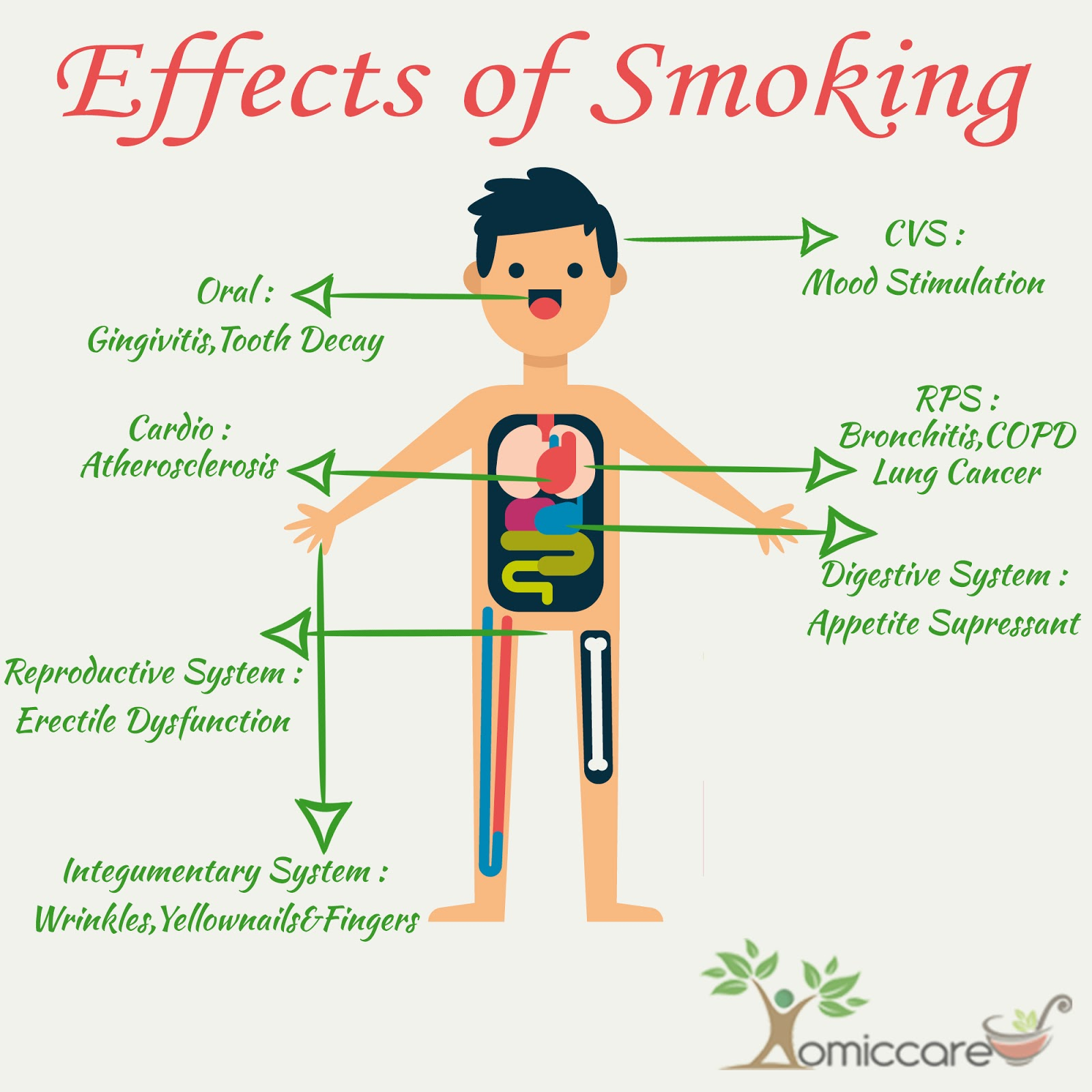 an introduction to the many effects of smoking on the human body Outlines cause and effect essay: the effects of smoking introduction smoking can be considered one  to die.