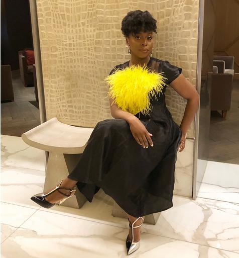 Chimamanda-Ngozi-Adichie-receives-2018-Barnes-Nobel-Writers-for-Writers-Award