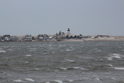 Sandy Neck Colony