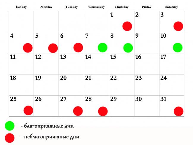 Православные праздники 2015 ноябрь 2015