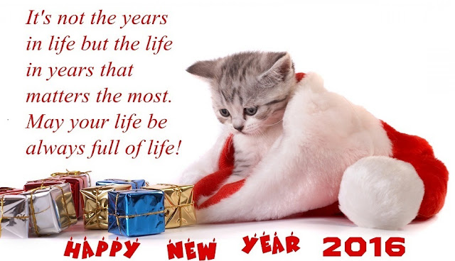 funny happy new year images and messages