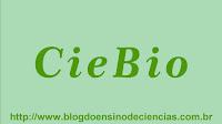 Roteiro de Aula Prática de Biologia: Observação da Morfologia da Raiz