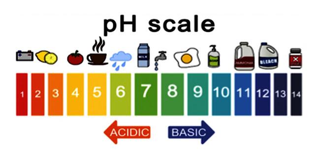 http://www.phscale.net/