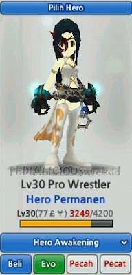 Pro Wrestler Hero Evolution LostSaga Indonesia
