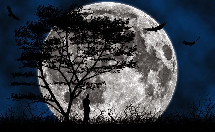 raiatea bac la plus grosse pleine lune de l 39 ann e 2014. Black Bedroom Furniture Sets. Home Design Ideas