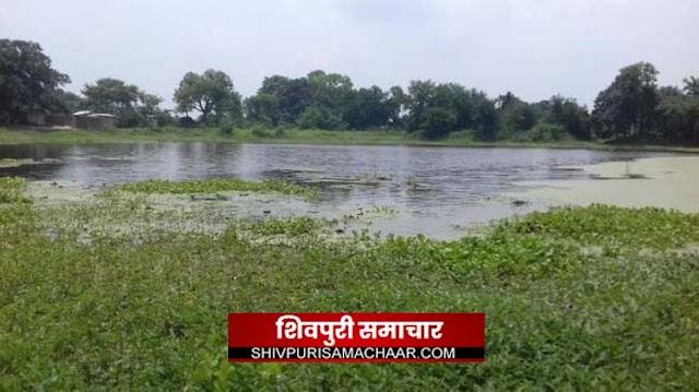 आखिर बीलारा तालाब का अतिक्रमण कब दिखाई देगा प्रशासन को, 84 बीघा के तालाब पर है अतिक्रमण | Shivpuri News