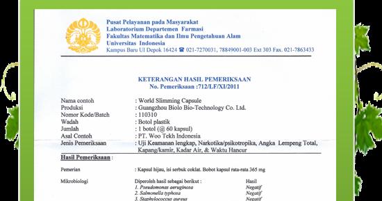 Pelangsing Terlaris Di Indonesia Biolo Slimming Capsul