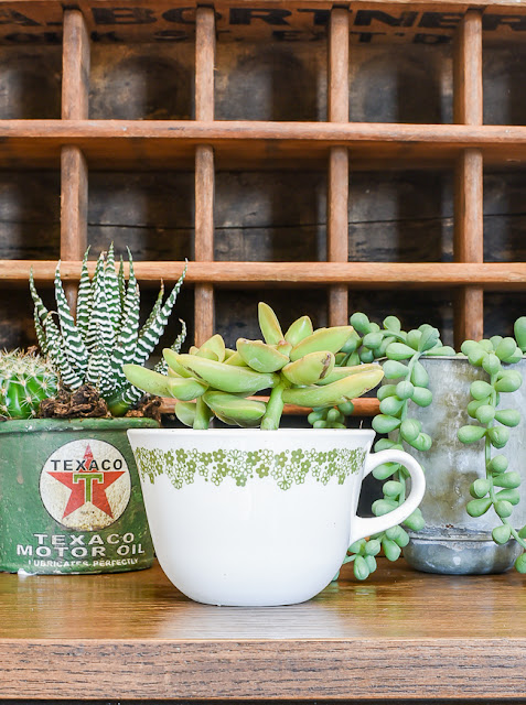 Creative vintage succulent planter ideas