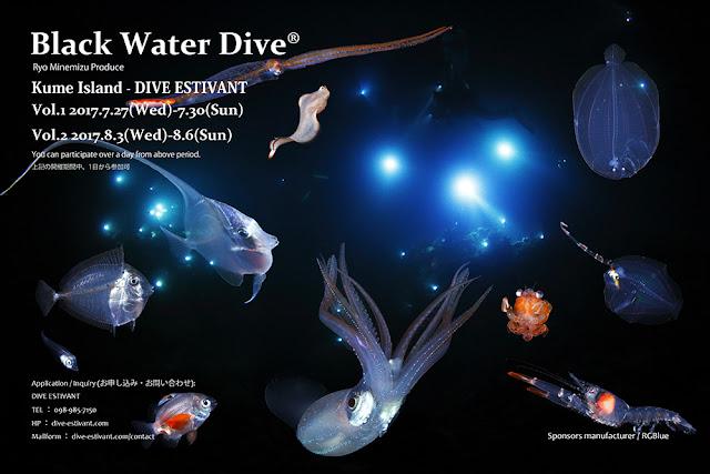 2017年Black Water Dive 久米島 夏季スケジュール