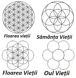 Floarea, samanta, oul si fructul Vieții - Simbol și semnificatie