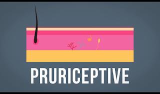 Apa Itu Saraf Neuron Pruriceptive ?, Penyebab Gatal
