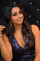 Sanjjanaa in a deep neck short dress spicy Pics 13 7 2017 ~  Exclusive Celebrities Galleries 104.JPG