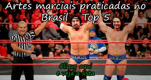 ARTES MARCIAIS PRATICADAS NO BRASIL - TOP 5