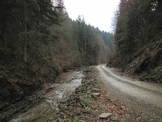 Dalej idziemy już szeroką drogą gruntową, biegnącą równolegle do Łomniczanki