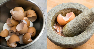 4 Reasons To Eat Eggshells, How To Do It And 12 Other Uses