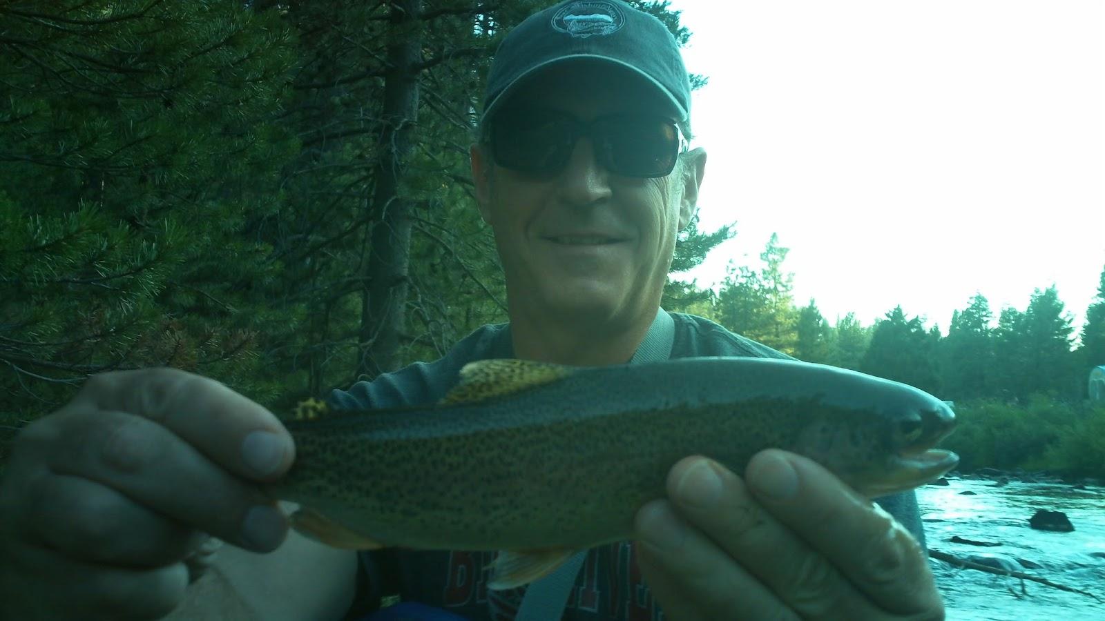 Scott Hopper's blog: LITTLE TRUCKEE RIVER FISHING REGULATIONS