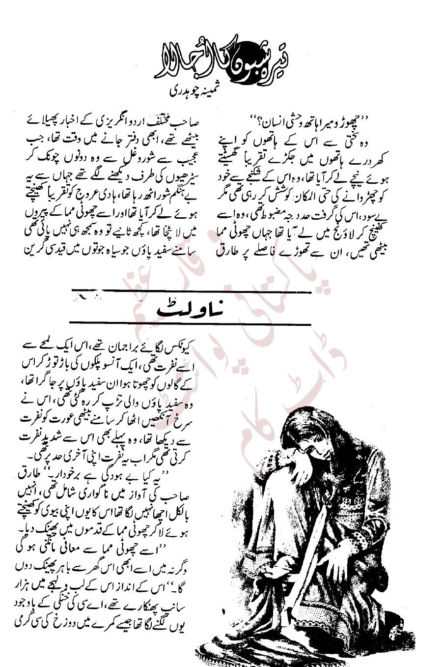 EZ Readings: Terah shabon ka ujala by Samina Choudhary pdf