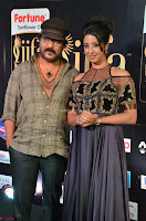 Celebrities in Sizzling Fashion at IIFA Utsavam Awards 2017 Day 1 27th March 2017 Exclusive  HD Pics 20.JPG