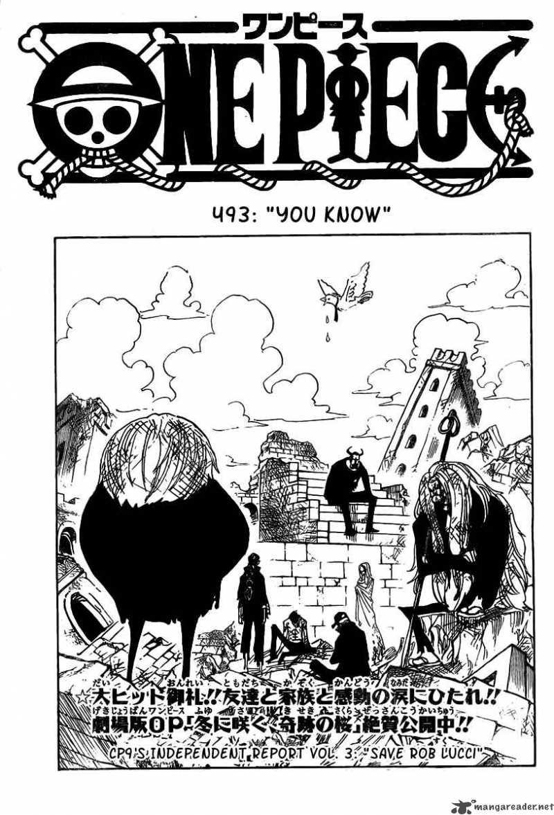 One Piece 493