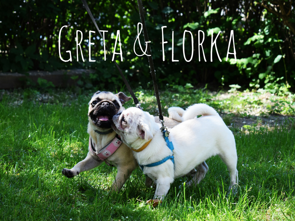 Greta & Florka