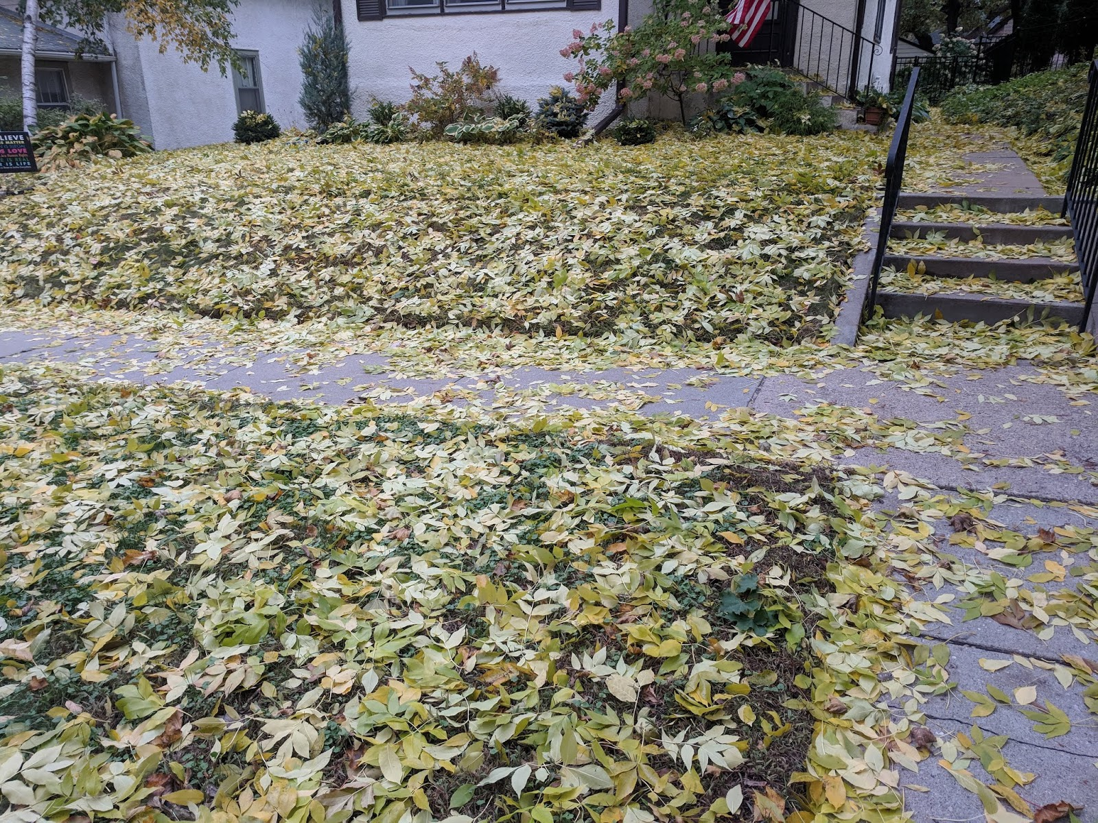 Should I Mulch Or Bag My Leaves This Fall
