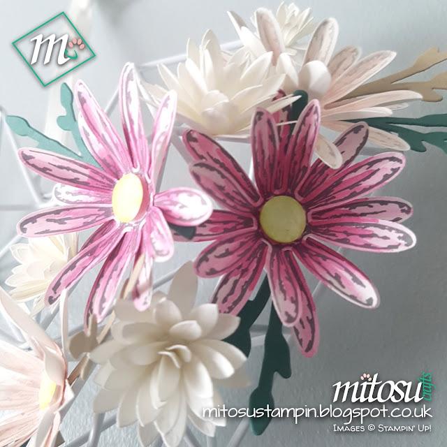 Daisy Delight Stampin Up SU Mitosu Crafts Order Stampinup UK Online Shop 5