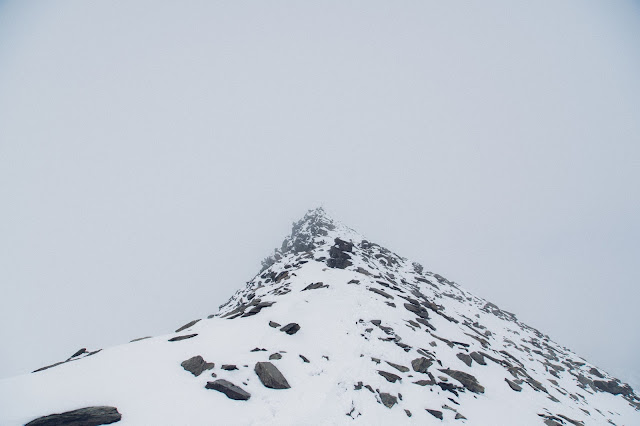 Plattenspitze – Punta delle Laste 3.422m  Bergtour-Martelltal  Wanderung-Martell  Wandern-Südtirol 12