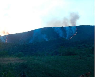 Incêndio de grandes proporções atinge área de mata na cidade de Jacobina