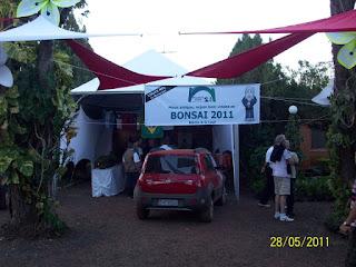 http://aubonsai.blogspot.com/2011/05/ribeirao-preto-2011.html