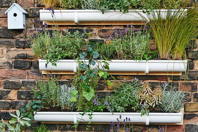 C mo construir un jard n vertical guia de jardin - Jardin vertical en casa ...