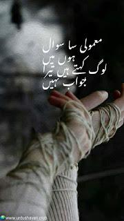 Mamuli Sa Sawal Hoon Mein..  Log Kehtay Hai Tera Jawab Nahi..!!  #sadshayari #urdushayari #poetry