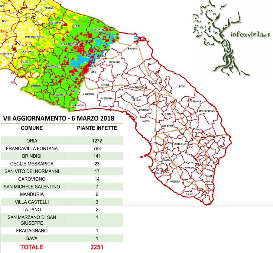 Diffusion Of Xylella In Italian Olive Trees New Xylella Monitoring Shows Tripling Of Infections In Puglia Containment Zone
