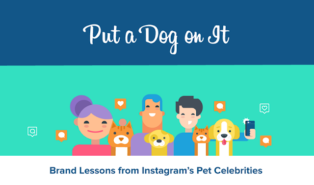 [Infographic] Is Cute Marketing Effective Marketing? Brand Lessons from Pet Celebrities
