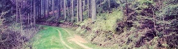 http://sloth-mtb.blogspot.com/2014/04/eine-schone-heuschnupfen-runde-zur.html