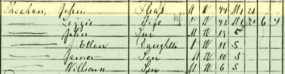 John and Lizzie Sheehan 1910 Queens, NY census https://jollettetc.blogspot.com
