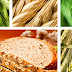 Φυτικές ίνες στη διατροφή μας : Νέα δεδομένα