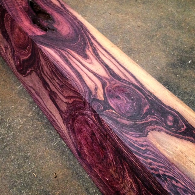 Tropical Exotic Hardwoods Mexican Kingwood Logs