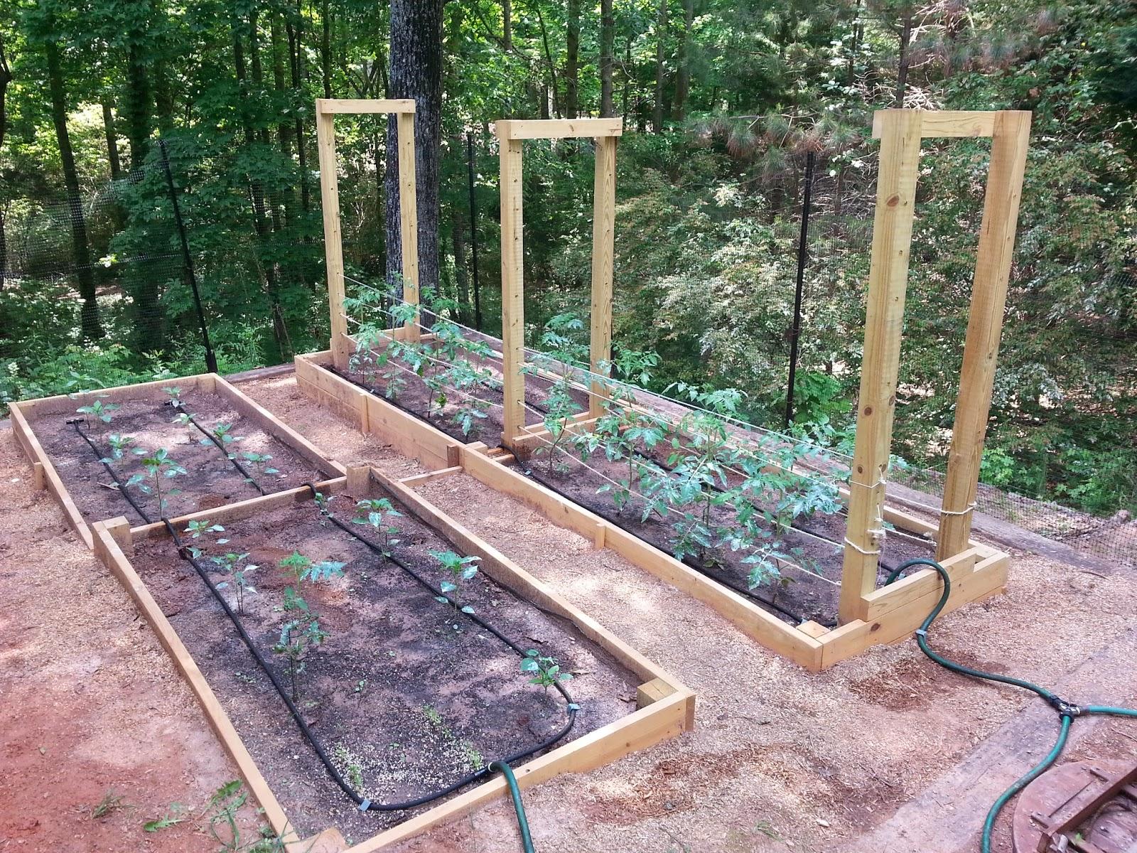 Money Saved Using Timer To Water Garden