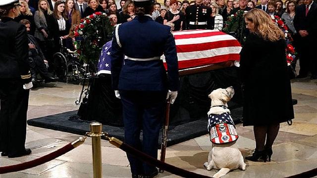 وفاة جورج بوش الاب وكلبتة تشارك في الجنازة وترقد بجوار التابوت