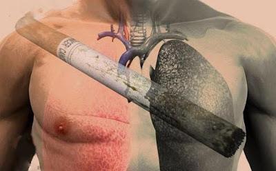 5 أطعمة تساعدك على التوقف عن التدخين نهائيا وتنظف الرئيتين تمام من اضرار التدخين