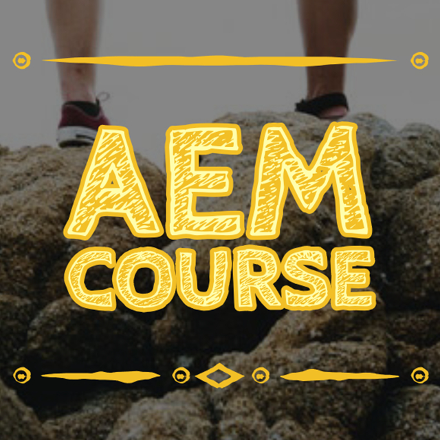 Learn AEM Online Course