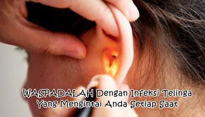 Obat Herbal Infeksi Telinga Terampuh